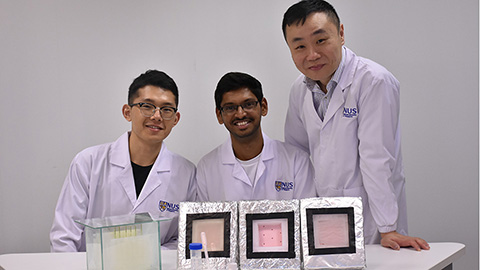 NUS Hydrogel Research Team